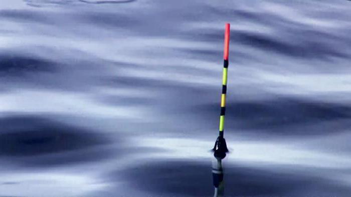 tipi di galleggianti da pesca