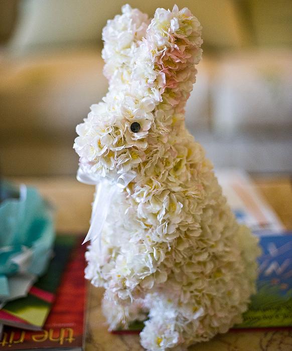 Ecco un coniglio così meraviglioso