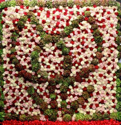 kwiaty na rabaty kwiatowe
