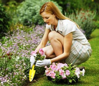 sadzenie kwiatów w kwietniku