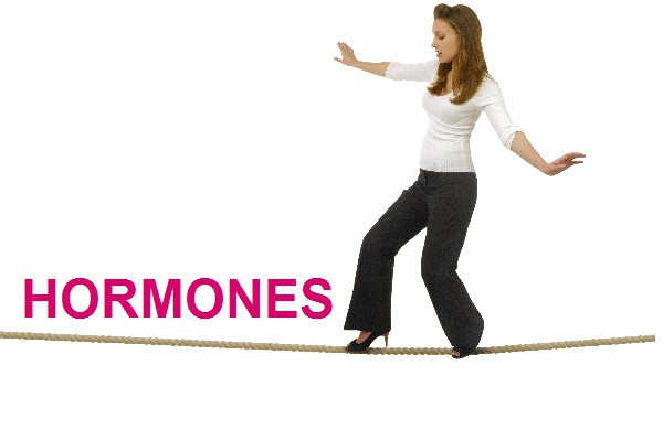 faza folikularnog menstrualnog ciklusa