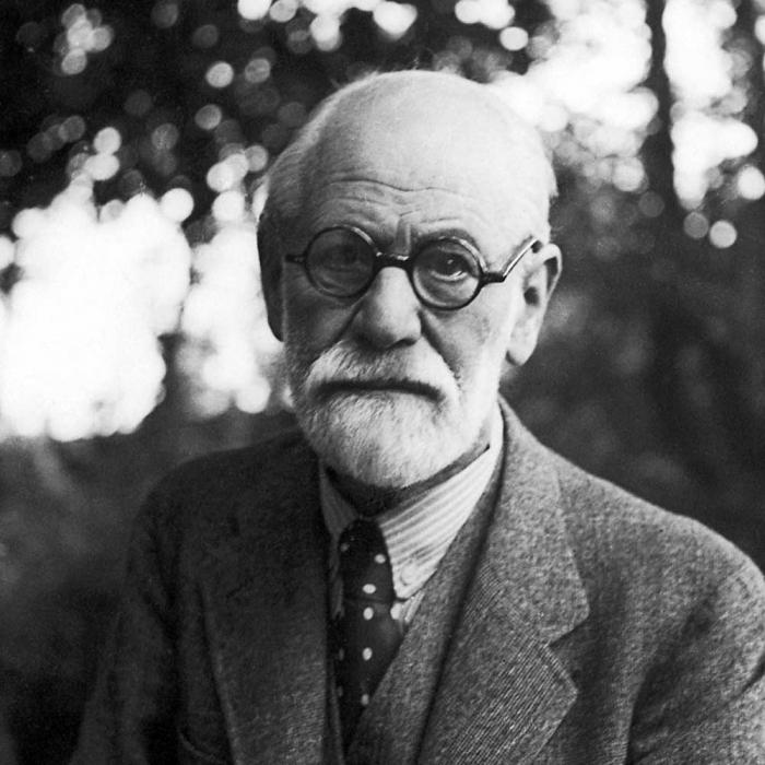Freudova teorie psychologie
