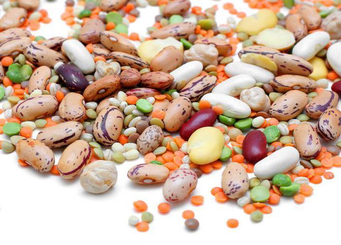 klasifikacija sadja in zelenjave