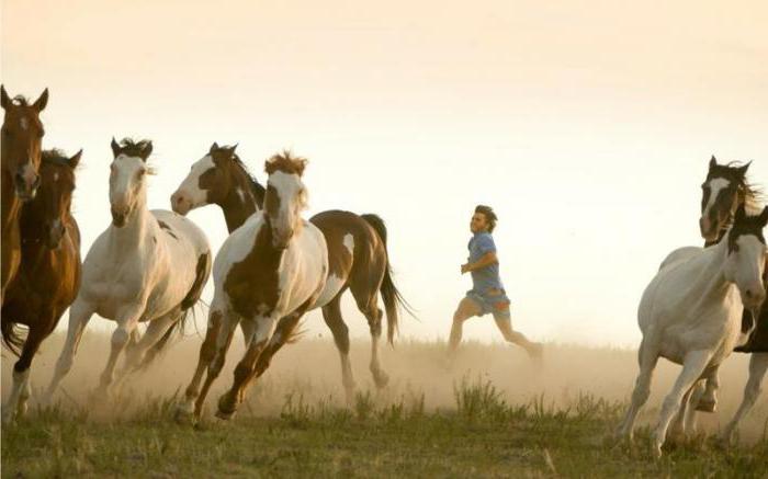 film sulla lista di cavalli 2016