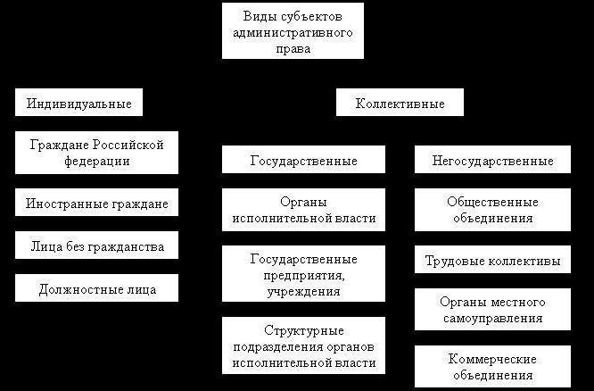 принципите на административното право