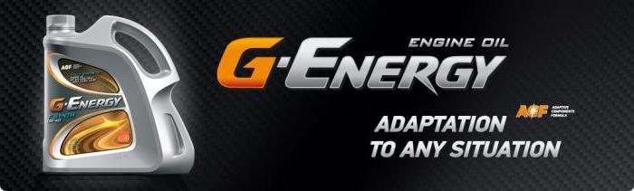 g olio per motori elettrici