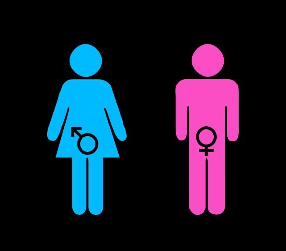 studi di genere in psicologia
