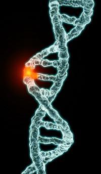 мутације гена