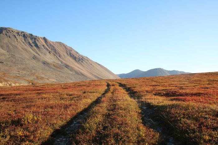 Penisola di Chukotka
