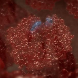 krvi za glikirani hemoglobin