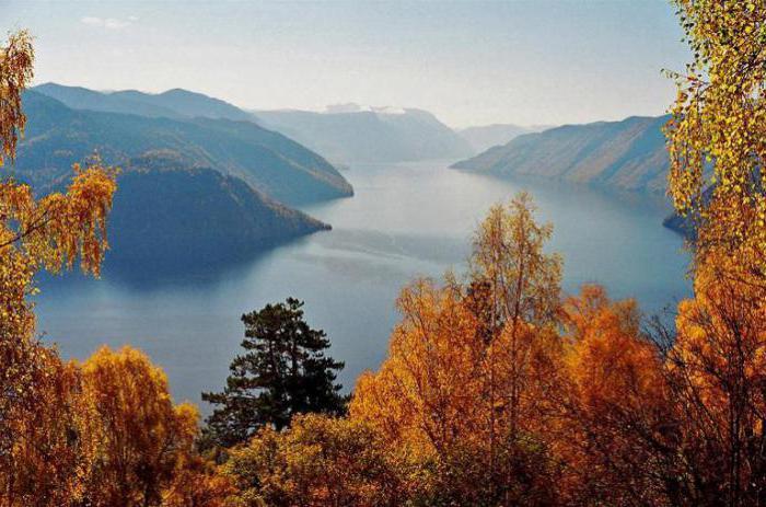 Златни планини на Алтай Описание Снимки