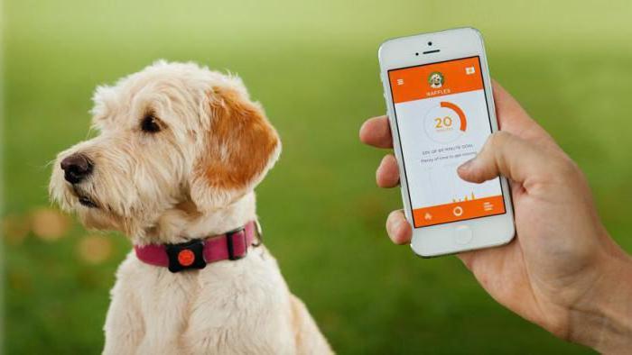 gps tracker za lovske pse