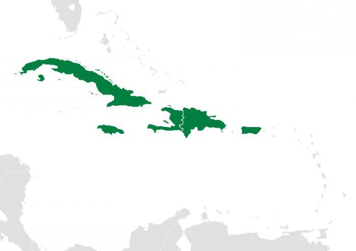 Antili