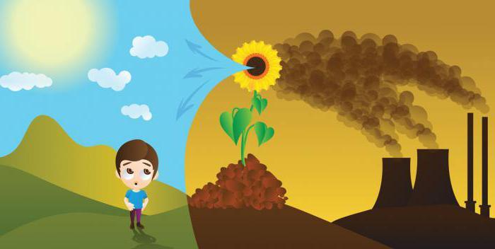 quantificazione delle emissioni di gas serra