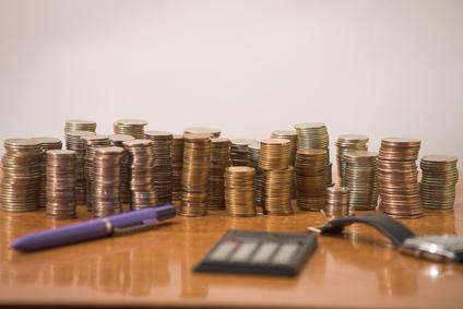 Брутен доход и печалба