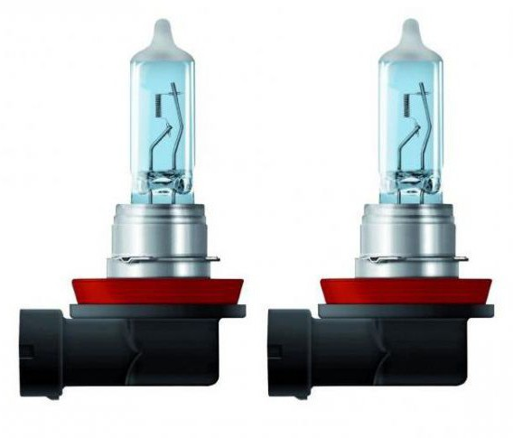 Lampada H11