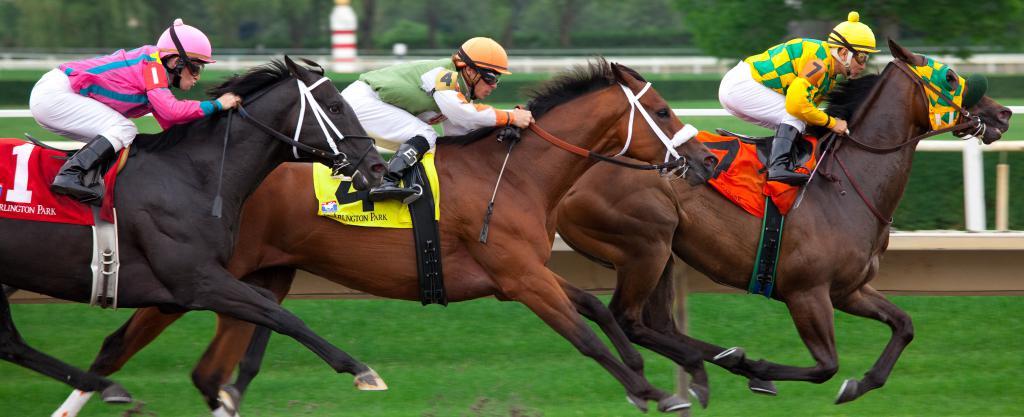 клађење на коње