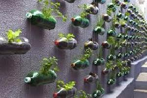 cvijeće u plastičnim bocama