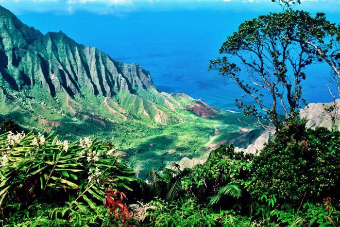 Havajski otoci