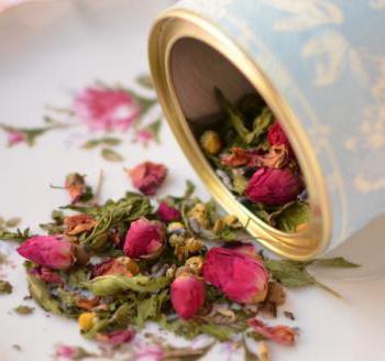 tè alle erbe per ricette di ogni giorno