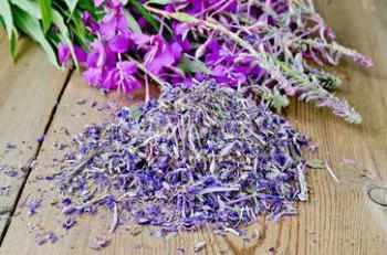 tè verde a base di erbe