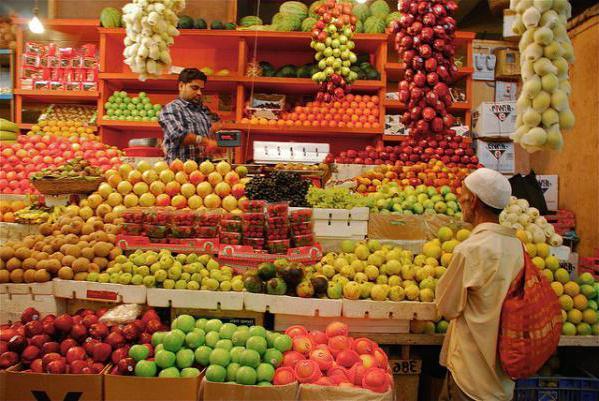 opinie goa holidays india