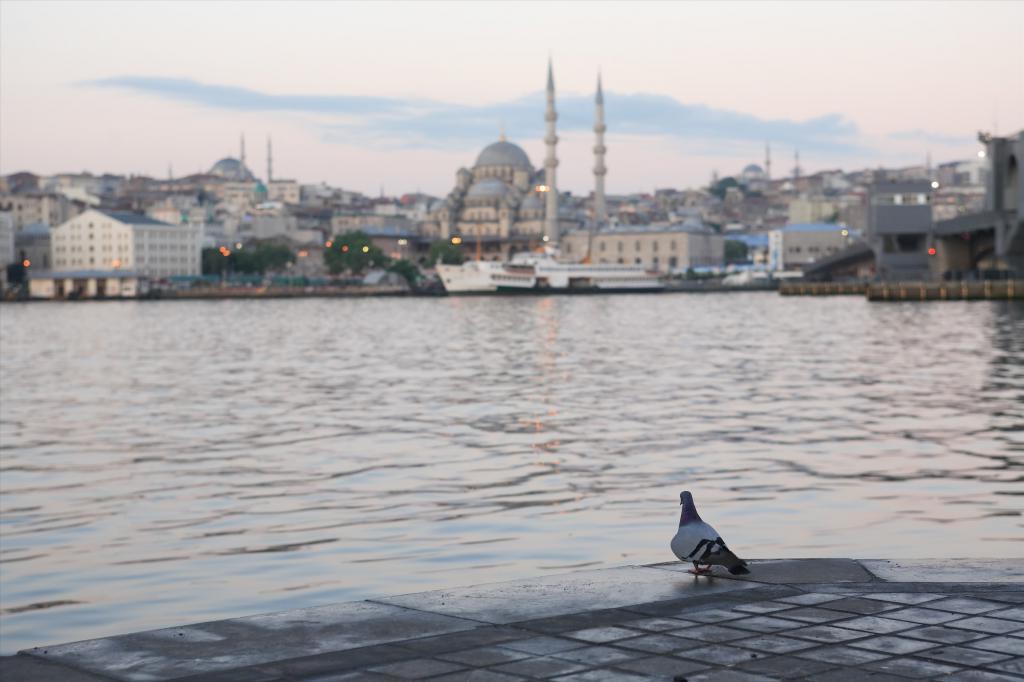 Escursioni in Turchia