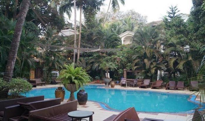 recensioni di alidia beach resort 3 goa