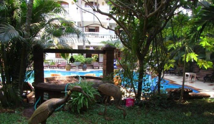 alidia beach resort 3 india goa nord