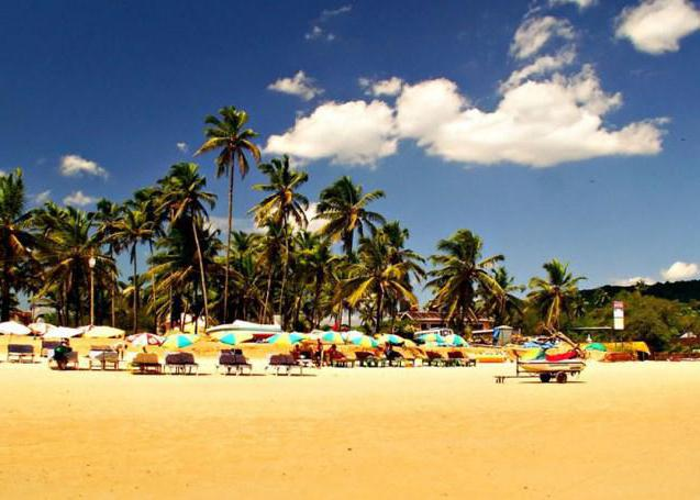 recensioni di alidia beach resort 3 india goa