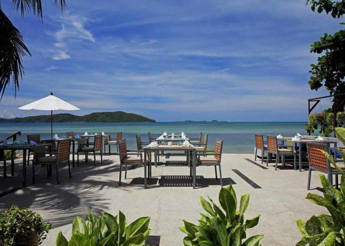 centra coconut beach resort samui 4