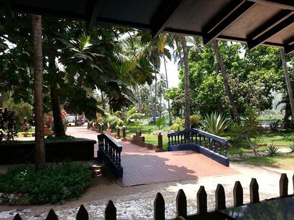 Hotel Palm Resort 2