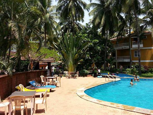 Palm Resort 2 intrattenimento