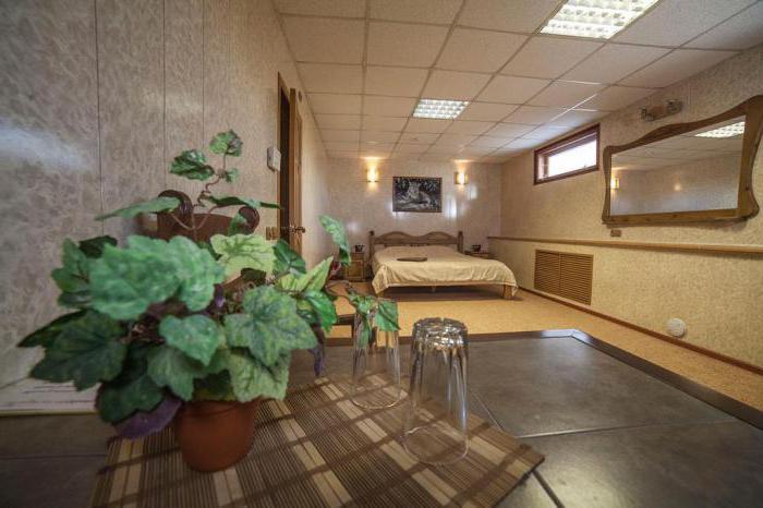 Brown House Vyborg