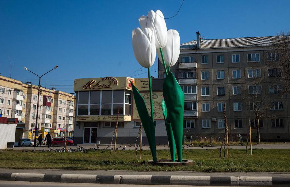 hoteli v mestu Yuzhno Sakhalinsk