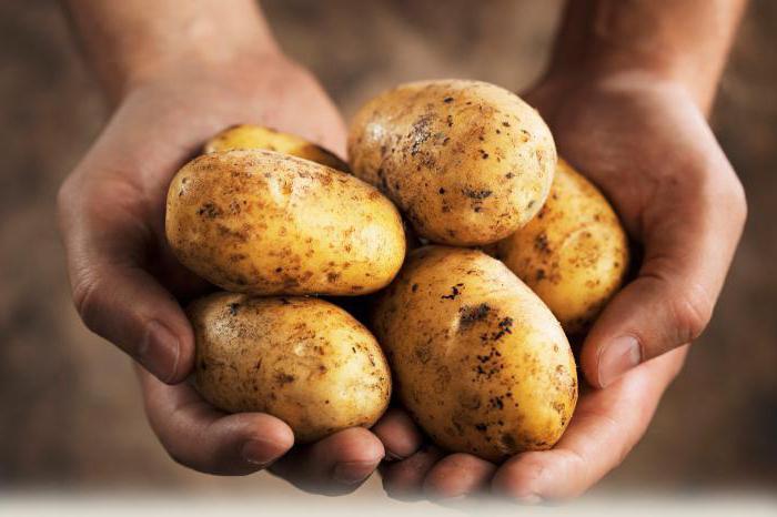 quante calorie in patate