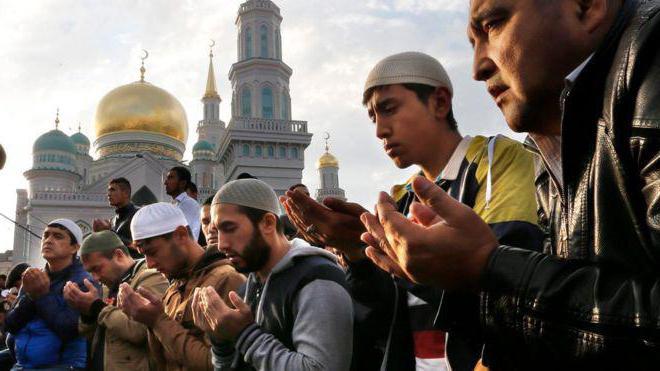 koliko muslimana živi u Rusiji