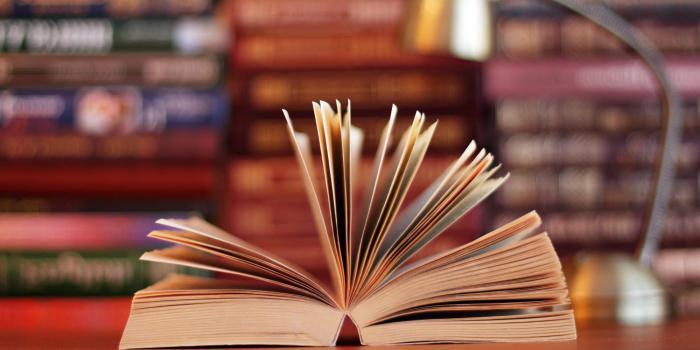 Авторите на исторически статии