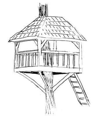 jak postavit dům stromu