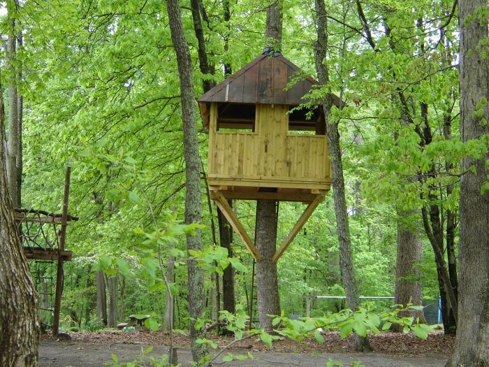 stavět dům stromu