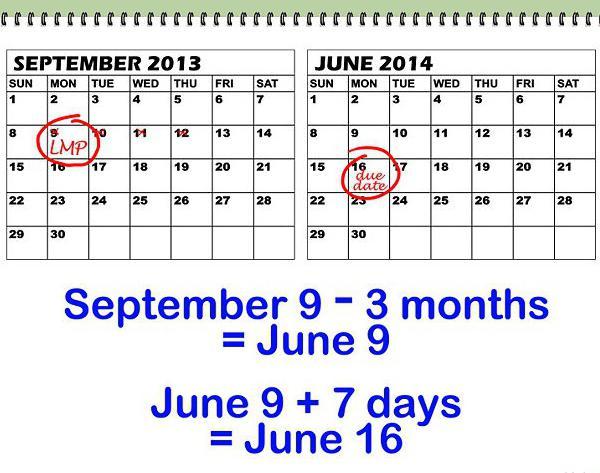 kalendar koncepcije izračunati datum rođenja