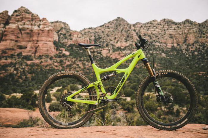 quale compagnia sceglie la mountain bike