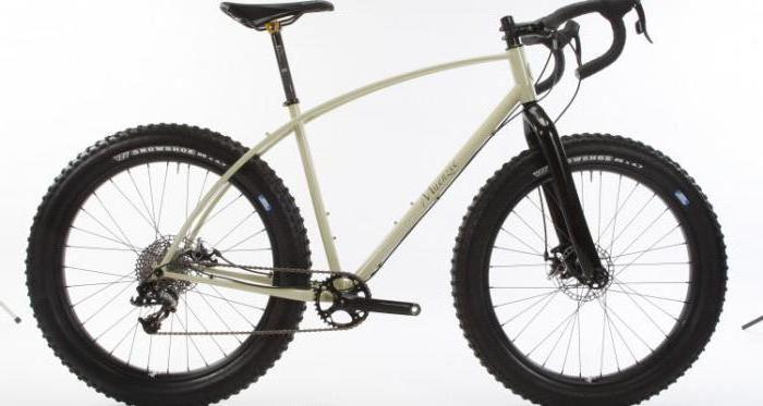 quale marca scegliere una mountain bike