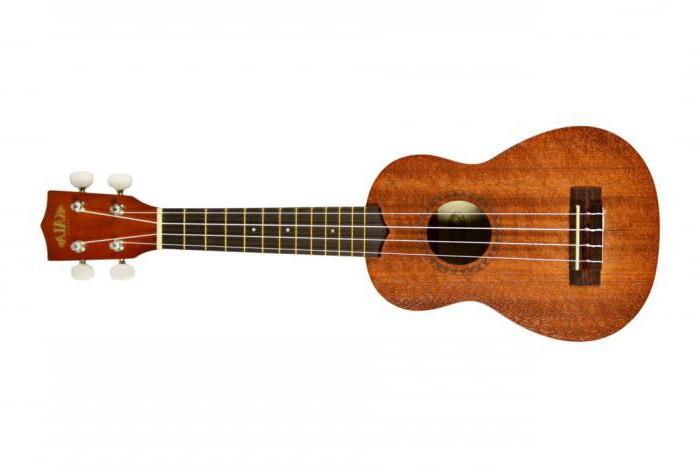 kako odabrati ukulele