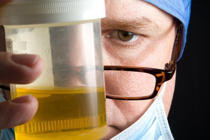 Как да се събере анализ на урина според Nechiporenko по време на бременност