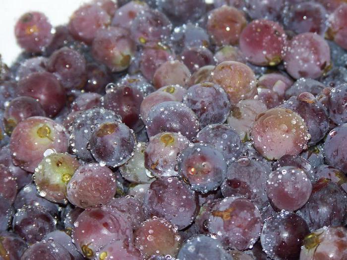 uva in scatola