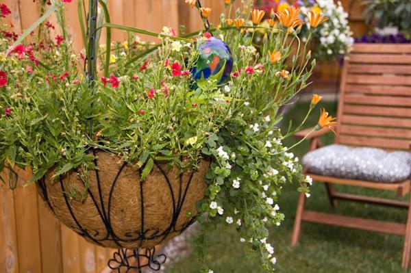 jak ozdobić swoje podwórko kwiatami