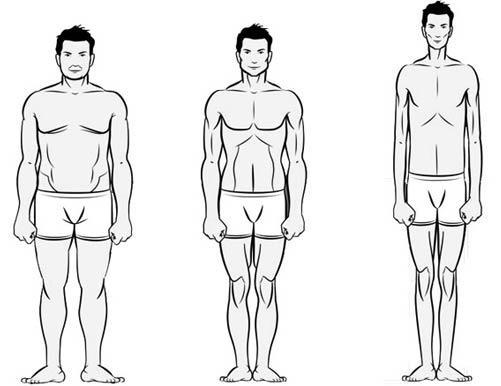 vrste muških figura