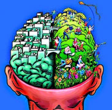 jak rozvíjet mozek