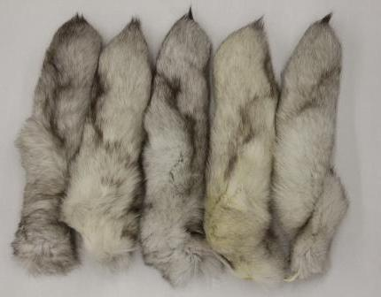 Kako razlikovati naravno krzno lisice od umetnega